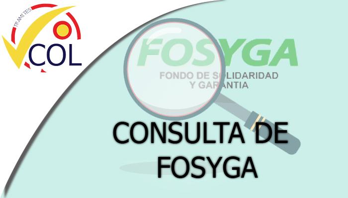 CONSULTA DE FOSYGA