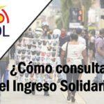 Cómo consultar el Ingreso Solidario